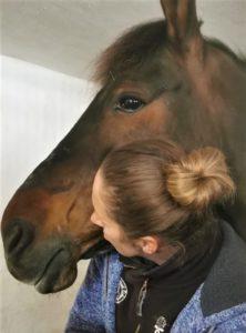 traumatisiertes Pferd Problempferd ängstliches Pferd