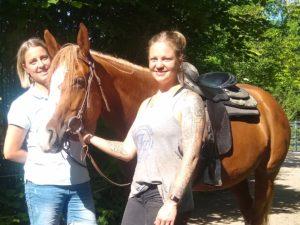gestresstes Pferd Traumatherapie Pferd